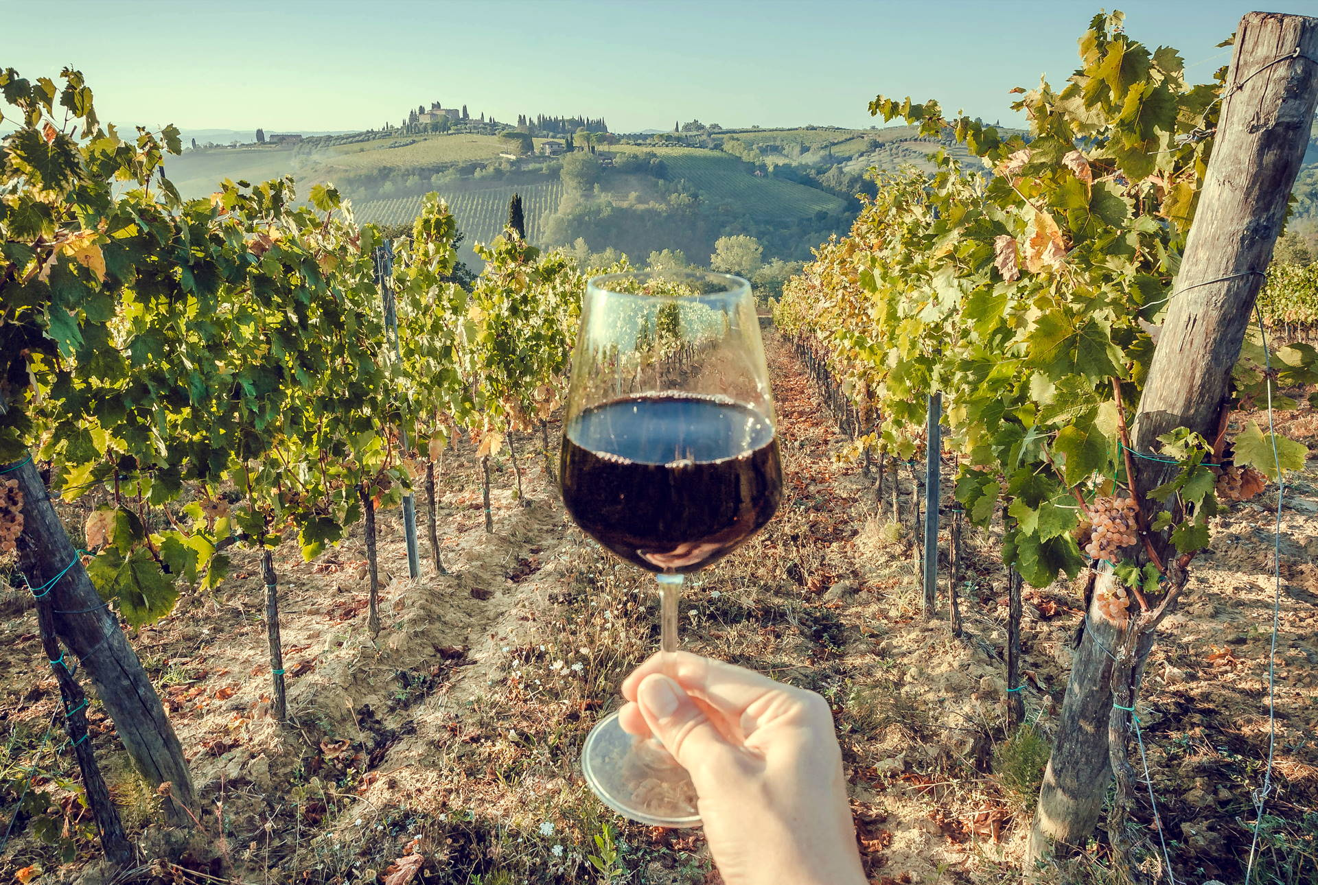 wine tours in toscana